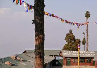 Tibetan Refugee Self Help Center